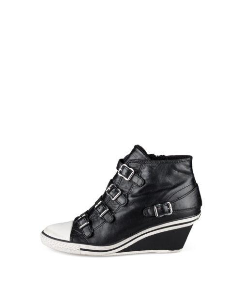 ASH 22231 Genial Black 149,99